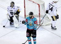 Press Eye - Belfast -  Northern Ireland - 13th January 2018 - Photo by William Cherry/Presseye. Belfast Giants Blair Riley celebrates scoring against Nottingham Panthers during Saturday nights Elite Ice Hockey League game at the SSE Arena, Belfast.