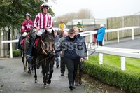 Press Eye - Belfast - Northern Ireland - 1st November 2019 - . Down Royal Racecourse - November Festival Day 1 - Friday . Race 3 - 1:45 WKD HURDLE . Coeur Sublime ridden by Davy Russell after winning the  third race.. Photo by Kelvin Boyes / Press Eye.. .
