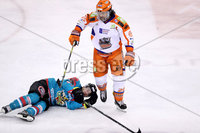 Press Eye - Belfast -  Northern Ireland - 05th January 2018 - Photo by William Cherry/Presseye. Sheffield Steelers Zack Fitzgerald is thrown out of the game after a challenge on Belfast Giants Spiro Goulakos during Friday nights Elite Ice Hockey League game at the SSE Arena, Belfast