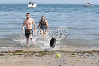 Press Eye - Helens Bay - Weather Pictures - 25th August 2019. Photograph by Declan Roughan. Stephen Currie and Emma Sharkey from Belfast with their dog Marley