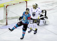 Press Eye - Belfast -  Northern Ireland - 13th January 2018 - Photo by William Cherry/Presseye. Belfast Giants John Kurtz celebrates scoring against Nottingham Panthers during Saturday nights Elite Ice Hockey League game at the SSE Arena, Belfast.