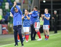 UEFA Europa League- Qualifying Third Round-2nd Leg, Windsor Park, Belfast  12/8/2019. Linfield FC vs FK FK Sutjeska. Linfield\'s  manager David Healy celebrates a 3-2 victory (5-3 agg) against  FK Sutjeska.. Mandatory Credit  INPHO/Brian Little