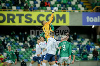 Press Eye - Belfast - Northern Ireland - 12th November 2020. European Qualifier. Northern Ireland v Slovakia. Slovakia\'s Marek Rodak.. Picture: Philip Magowan / Press Eye