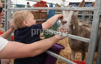 PressEye-Northern Ireland- 15th May  2019-Picture by Brian Little/PressEye. Sam Beattie aged 2 from Tullyveery, Killyleagh  at Balmoral Park during the first day of the Balmoral Show 2019. Picture by Brian Little/PressEye