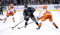 Press Eye - Belfast -  Northern Ireland - 06th January 2018 - Photo by William Cherry/Presseye. Belfast Giants David Rutherford with Sheffield Steelers Scott Aarssen during Saturday nights Elite Ice Hockey League game at the SSE Arena, Belfast