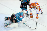 5 January 18, Mandatory Credit ©Press Eye/Darren Kidd.  . Belfast Giants Jackson Whistle.  with Sheffield Steelers Eric Neiley during Friday nights Elite League game at the SSE Arena, Belfast.