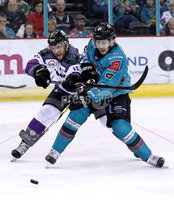 Press Eye - Belfast, Northern Ireland - 19th October 2019 - Photo by William Cherry/Presseye. Belfast Giants\' Brian Ward with Manchester Storm\'s Cam Critchlow during Saturday nights Elite Ice Hockey League game at the SSE Arena, Belfast.      Photo by William Cherry/Presseye.