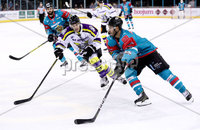 Press Eye - Belfast -  Northern Ireland - 11th February 2018 - Photo by William Cherry/Presseye. Belfast Giants Spiro Goulakos during Sunday afternoons Elite Ice Hockey League game at the SSE Arena, Belfast.