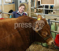 PressEye-Northern Ireland- 16th May 2018-Picture by Brian Little/ PressEye. Emma Allen from Loughgall showing her Limousin  Bull during the First day of the 2018 Balmoral Show, in partnership with Ulster Bank, at Balmoral Park. Picture by Brian Little/PressEye