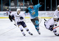 Press Eye - Belfast -  Northern Ireland - 24th August 2019 - Photo by William Cherry/Presseye . Belfast Giants\' Curtis Leonard during Saturday nights Exhibition Game against Herning Blue Fox at the SSE Arena, Belfast.    Photo by William Cherry/Presseye