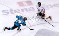 Press Eye - Belfast -  Northern Ireland - 11th January 2019 - Photo by William Cherry/Presseye. Belfast Giants Colin Shields with HK Gomels Yevgeni Goranin during Friday nights Continental Cup Final game at the SSE Area, Belfast.   Photo by William Cherry/Presseye