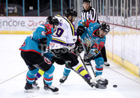 Press Eye - Belfast -  Northern Ireland - 11th February 2018 - Photo by William Cherry/Presseye. Belfast Giants with Manchester Storm\'s Ciaran Long during Sunday afternoons Elite Ice Hockey League game at the SSE Arena, Belfast.