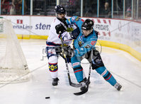 Press Eye - Belfast -  Northern Ireland -16th November 2019 - Photo by Darren Kidd/Presseye . Belfast Giants\' Brian Ward with Dundee Stars during Saturday nights Elite Ice Hockey League game at the SSE Arena, Belfast.    Photo by Darren Kid/Presseye
