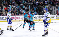Press Eye - Belfast -  Northern Ireland - 09th February 2018 - Photo by William Cherry/Presseye. Belfast Giants Steve Saviano celebrates scoring against Fife Flyers during Friday nights Elite Ice Hockey League game at the SSE Arena, Belfast.