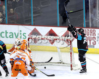 Press Eye - Belfast -  Northern Ireland - 06th January 2018 - Photo by William Cherry/Presseye. Belfast Giants Brendan Connolly celebrates as  Jonathan Ferland scores against Sheffield Steelers during Saturday nights Elite Ice Hockey League game at the SSE Arena, Belfast