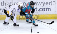Press Eye - Belfast -  Northern Ireland - 12th January 2018 - Photo by William Cherry/Presseye. Belfast Giants David Rutherford with Nottingham Panthers Ollie Betteridge during Friday nights Elite Ice Hockey League game at the SSE Arena, Belfast.