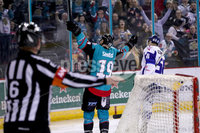 Press Eye - Belfast -  Northern Ireland - 06th April 2019 - Photo by William Cherry/Presseye. Belfast Giants\' Colin Shields celebrates scoring against Coventry Blaze during Saturday evenings PredictorBet Playoff Quarter Final 1st Leg game at the SSE Arena, Belfast. Photo by William Cherry/Presseye