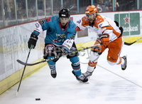 Press Eye - Belfast, Northern Ireland - 06th December 2019 - Photo by William Cherry/Presseye. Belfast Giants\' David Goodwin with Sheffield Steelers during Friday nights Elite Ice Hockey League game at the SSE Arena, Belfast.       Photo by William Cherry/Presseye