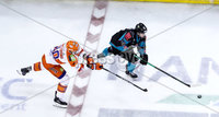Press Eye - Belfast -  Northern Ireland - 06th January 2019 - Photo by William Cherry/Presseye. Belfast Giants\' Darcy Murphy with Sheffield Steelers\' John Armstrong during Sunday afternoons Elite Ice Hockey League game at the SSE Arena, Belfast.    Photo by William Cherry/Presseye