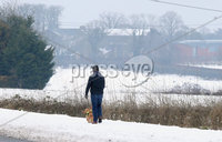 Press Eye - Belfast - Northern Ireland - 4th March 2018. As the snow in Northern Ireland begins to clear a dog walker is pictured in the Fourwinds area of south Belfast. . Picture by Jonathan Porter/PressEye