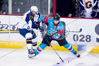 Press Eye - Belfast -  Northern Ireland - 09th August 2017 - Belfast Giants Jim Vandermeer with Guilford Flames Ian Watters during Saturday nights Elite Ice Hockey League game at the SSE Arena, Belfast.  Photo by Presseye