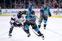 Press Eye - Belfast -  Northern Ireland - 03rd March 2019 - Photo by William Cherry/Presseye. Belfast Giants\' Mark Garside with Manchester Storm during Sunday afternoons Elite Ice Hockey League game at the SSE Arena, Belfast.