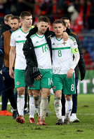 Press Eye - Belfast -  Northern Ireland - 12th November 2017 - Photo by William Cherry/Presseye. Northern Ireland\'s Oliver Norwood and Steven Davis are  dejected after drawing 0-0 with Switzerland but lost the World Cup Play Off 1-0 over the two games.