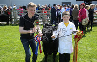 PressEye-Northern Ireland- 16th May 2018-Picture by Brian Little/ PressEye. Riverside Special School pupils  Stephen Millar and Matthew Bloomer Dexter project during the  First day of the 2018 Balmoral Show, in partnership with Ulster Bank, at Balmoral Park. Picture by Brian Little/PressEye