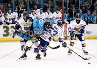 Press Eye - Belfast -  Northern Ireland -16th November 2019 - Photo by Darren Kidd/Presseye . Belfast Giants\' Kevin Raine with Dundee Stars\' Craig Gans during Saturday nights Elite Ice Hockey League game at the SSE Arena, Belfast.    Photo by Darren Kidd/Presseye
