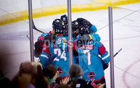 Press Eye - Belfast -  Northern Ireland - 09th August 2017 - Belfast Giants Sebastien Sylvestre scores during Saturday nights Elite Ice Hockey League game at the SSE Arena, Belfast.  Photo by Presseye