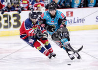 Press Eye - Belfast -  Northern Ireland - 14th September 2018 - Photo by William Cherry/Presseye. Belfast Giants\' Darcy Murphy with Dundee Stars\' Petr Chaloupka during Friday nights Challenge Cup game at the SSE Arena, Belfast.       Photo by William Cherry/Presseye