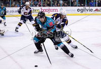 Press Eye - Belfast -  Northern Ireland - 03rd February 2019 - Photo by William Cherry/Presseye. Belfast Giants\' Darcy Murphy with Guildford Flames\' Calle Ackered during Friday nights Elite Ice Hockey League game at the SSE Arena, Belfast.   Photo by William Cherry/Presseye