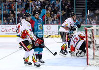 Press Eye - Belfast -  Northern Ireland - 11th January 2019 - Photo by William Cherry/Presseye. Belfast Giants David Rutherford celebrates scoring against HK Gomel during Friday nights Continental Cup Final game at the SSE Area, Belfast.   Photo by William Cherry/Presseye