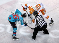Press Eye - Belfast, Northern Ireland - 06th December 2019 - Photo by William Cherry/Presseye. Belfast Giants\' Patryk Wronka  with Sheffield Steelers\' Tanner Eberie during Friday nights Elite Ice Hockey League game at the SSE Arena, Belfast.       Photo by William Cherry/Presseye