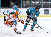 Press Eye - Belfast, Northern Ireland - 06th December 2019 - Photo by William Cherry/Presseye. Belfast Giants\' Lewis Hook with Sheffield Steelers\' Eric Meland during Friday nights Elite Ice Hockey League game at the SSE Arena, Belfast.       Photo by William Cherry/Presseye