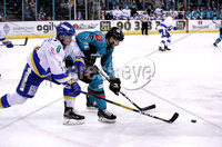 Press Eye - Belfast, Northern Ireland - 06th March 2020 - Photo by William Cherry/Presseye. Belfast Giants\' Brian Ward with Fife Flyers\' Michal Gutwald during Friday nights Elite Ice Hockey League game at the SSE Arena, Belfast.   Photo by William Cherry/Presseye