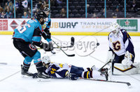 Press Eye - Belfast -  Northern Ireland - 03rd February 2019 - Photo by William Cherry/Presseye. Belfast Giants\' Blair Riley with Guildford Flames\' Chris Carrozzi during Friday nights Elite Ice Hockey League game at the SSE Arena, Belfast.   Photo by William Cherry/Presseye
