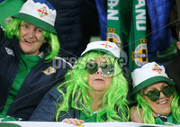 Press Eye - Belfast - Northern Ireland - 16th November 2019. UEFA EURO 2020 Qualifier Group C.  Northern Ireland Vs Netherlands at the National Stadium at Windsor Park, Belfast. . Northern Ireland fans  . . Picture by Jonathan Porter/PressEye