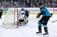 Press Eye - Belfast -  Northern Ireland - 03rd March 2019 - Photo by William Cherry/Presseye. Belfast Giants\' Blair Riley scoring against Manchester Storm during Sunday afternoons Elite Ice Hockey League game at the SSE Arena, Belfast.