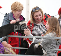 PressEye-Northern Ireland- 16th May 2018-Picture by Brian Little/ PressEye. Gladys Haynes and Christine and Kayla Parke with a British Alpine Goat on the First day of the 2018 Balmoral Show, in partnership with Ulster Bank, at Balmoral Park. Picture by Brian Little/PressEye