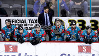 Press Eye - Belfast -  Northern Ireland - 10th March 2018 - Photo by William Cherry/Presseye. Belfast Giants head coach Adam Keefe during Saturday evenings Elite Ice Hockey League game at the SSE Arena, Belfast.