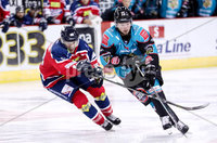Press Eye - Belfast -  Northern Ireland - 14th September 2018 - Photo by William Cherry/Presseye. Belfast Giants\' with Dundee Stars\' Petr Chaloupka during Friday nights Challenge Cup game at the SSE Arena, Belfast.       Photo by William Cherry/Presseye