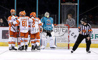 Press Eye - Belfast, Northern Ireland - 06th December 2019 - Photo by William Cherry/Presseye. Sheffield Steelers celebrates scoring against the Belfast Giants during Friday nights Elite Ice Hockey League game at the SSE Arena, Belfast.       Photo by William Cherry/Presseye
