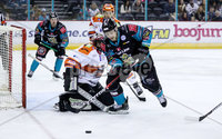 Press Eye - Belfast -  Northern Ireland - 06th January 2019 - Photo by William Cherry/Presseye. Belfast Giants\' Jonathan Ferland with Sheffield Steelers\' Matt Climie during Sunday afternoons Elite Ice Hockey League game at the SSE Arena, Belfast.    Photo by William Cherry/Presseye