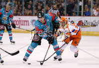 5 January 18, Mandatory Credit ©Press Eye/Darren Kidd.  . Belfast Giants Jonathan Ferland with Sheffield Steelers Jonathan Phillips during Friday nights Elite League game at the SSE Arena, Belfast.