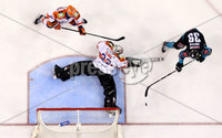 Press Eye - Belfast -  Northern Ireland - 06th January 2019 - Photo by William Cherry/Presseye. Belfast Giants\' Patrick Dwyer scoring against Sheffield Steelers net minder Matt Climie during Sunday afternoons Elite Ice Hockey League game at the SSE Arena, Belfast.    Photo by William Cherry/Presseye