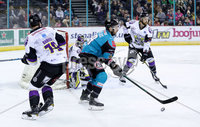 Press Eye - Belfast -  Northern Ireland - 03rd March 2019 - Photo by William Cherry/Presseye. Belfast Giants\' Colin Shields with Manchester Storm\'s Shane Bakker during Sunday afternoons Elite Ice Hockey League game at the SSE Arena, Belfast.