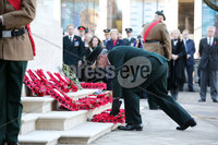 Press Eye - Belfast - Northern Ireland - 12th November 2017 . Drew Harris lays a wreath at The Cenotaph in the Garden of Remembrance, City Hall Grounds, Belfast during the National Day of Remembrance . It is the city of Belfast's tribute to the memory of those who died in the Great War and the Second World War. . . Photo by Kelvin Boyes / Press Eye..