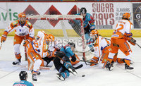 5 January 18, Mandatory Credit ©Press Eye/Darren Kidd.  . Belfast Giants against Sheffield Steelers during Friday nights nights Elite League game at the SSE Arena, Belfast.