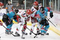11 November 17, Mandatory Credit ©Press Eye/Darren Kidd.  Belfast Giants v Cardiff Devils during Saturday nights Elite League game at the SSE Arena, Belfast. Photo by Darren Kidd/Presseye